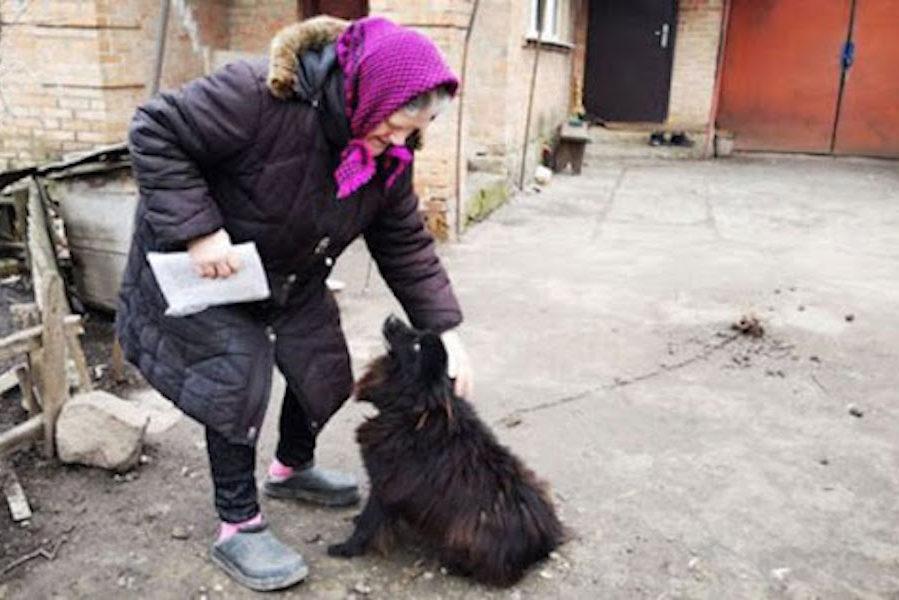 Пенсіонерка, якій нардеп порадив продати собаку, раптово розбагатіла